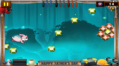 Ninja Rabbit Pro screenshot 4