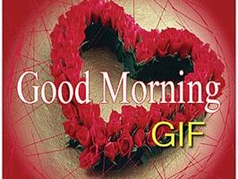 Gif Good Morning Stickers By Cu Tran