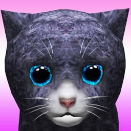 KittyZ, my virtual pet cat