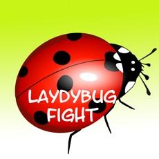 Activities of Ladybug Fighter