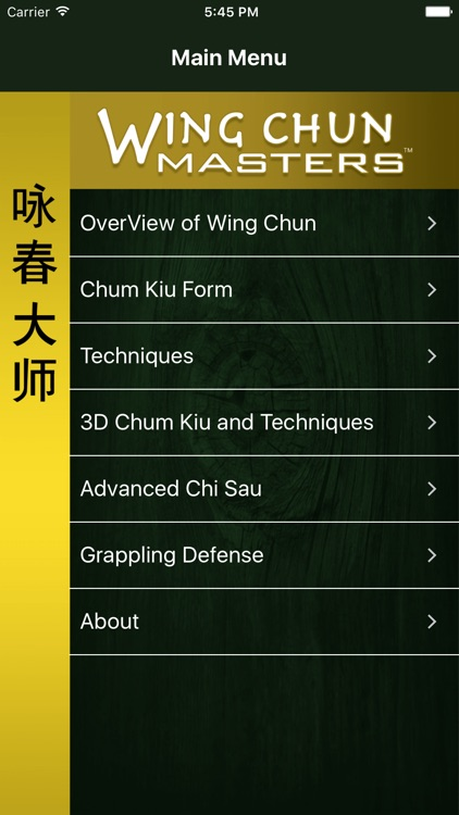 Wing Chun Masters 2 - HD screenshot-0