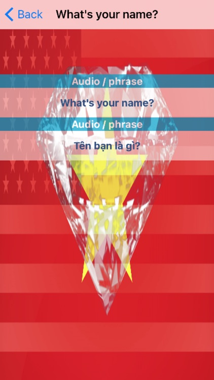 Vietnamese Phrases Diamond 4K Edition