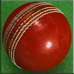 Cricket Ball Stay In The Line - A Perfect Game To Get Ready For World Cup Cricket 2015 Free