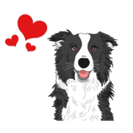 Mr. Pickles The Cute Border Collie Dog Sticker