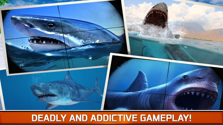 Angry Fish Hunting - Sea Shark Spear-fishing Game screenshot-4