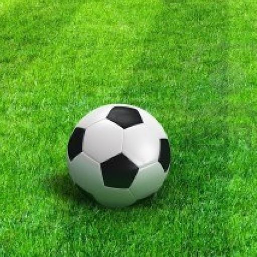 Soccer Statistics by Bob Li