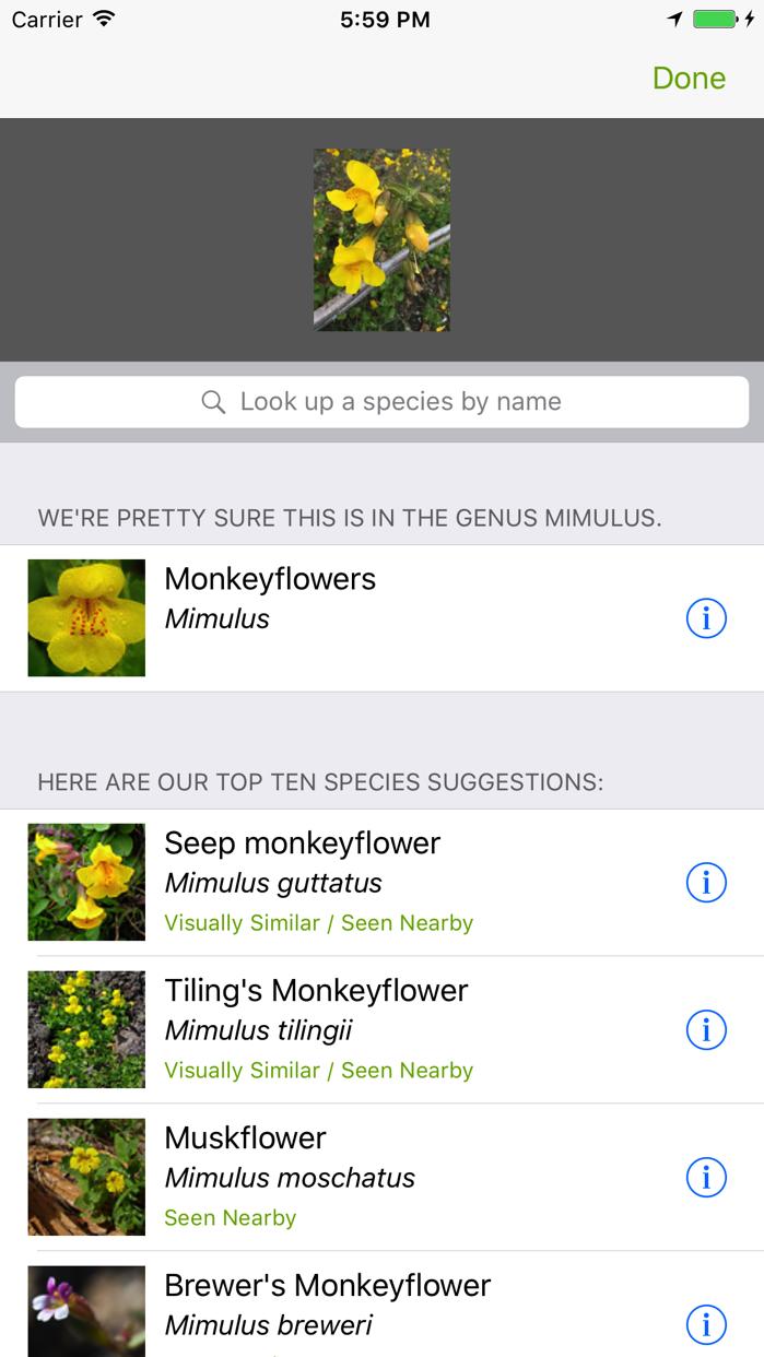 iNaturalist Screenshot