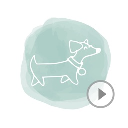Animated Cute Dog Stickers