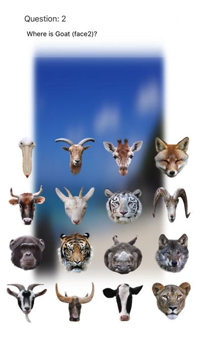 Animal Faces Touch 〜動物の顔を当ててみよう〜のおすすめ画像3