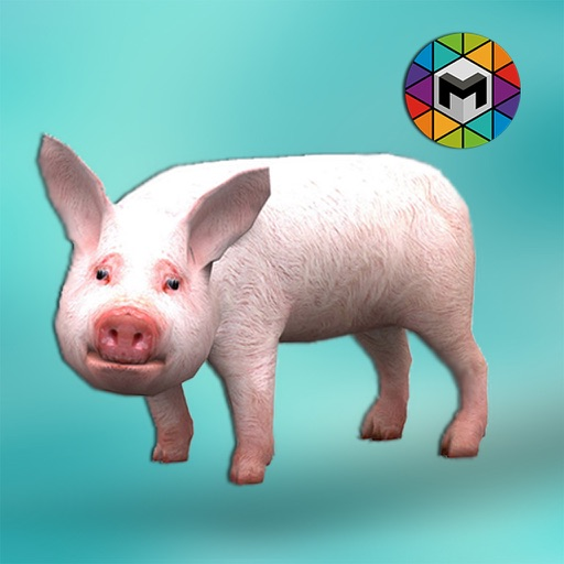 Pig Simulator iOS App