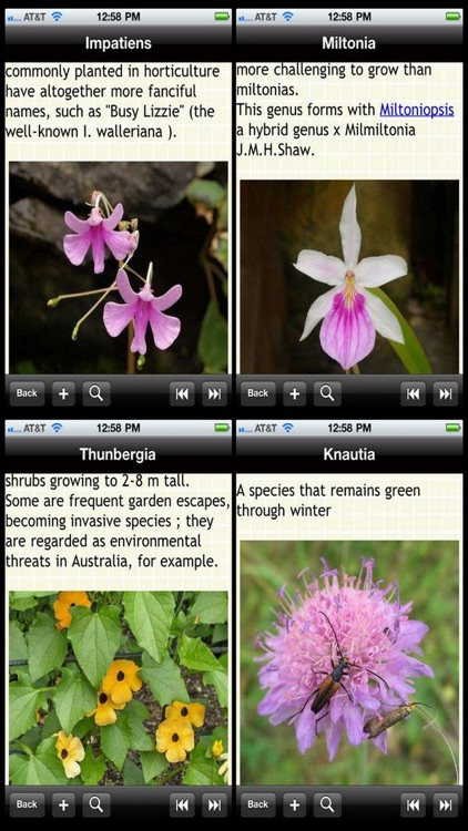 Garden Plants Bible screenshot-1