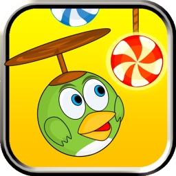 Swing Candy Bird