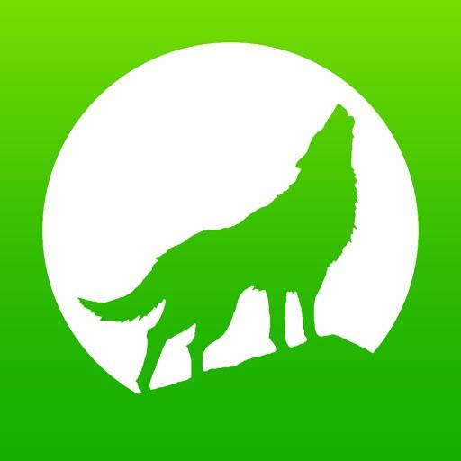 Wolf-GIS APEX