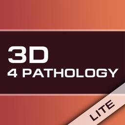 3D Pathology Constructor