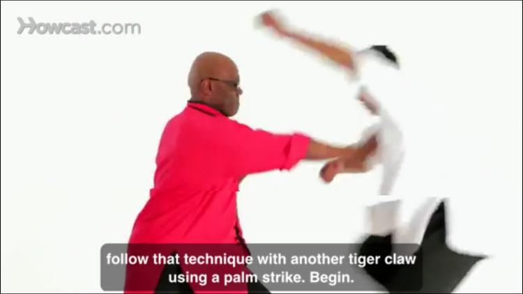 Shaolin Kung Fu Master Class screenshot-4