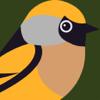 Reclamos de Pájaros HD PRO