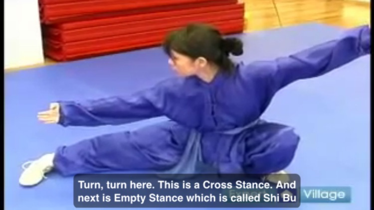 Wushu screenshot-4