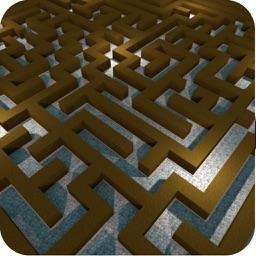 Maze Runner Brain Puzzle