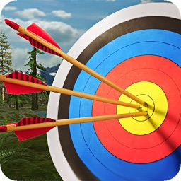 Archery Master 3D - Arrow Game