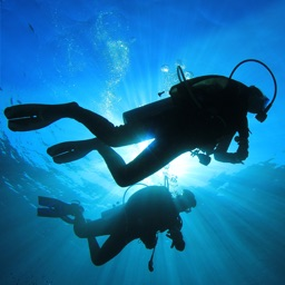 Around the World: Scuba Diving