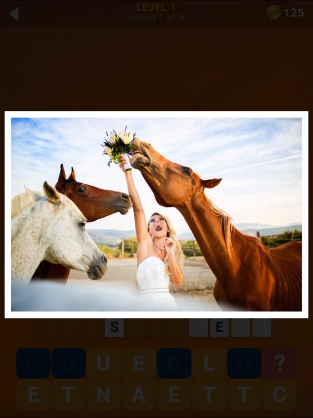 135 Photo Crosswords on the App