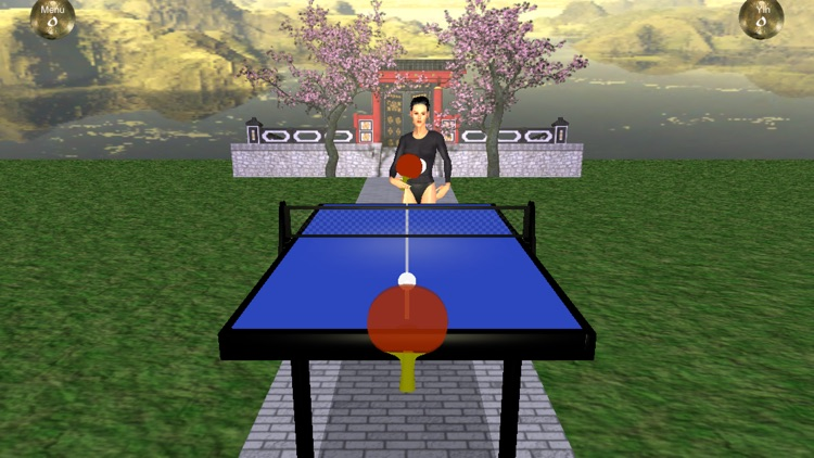 Zen Table Tennis