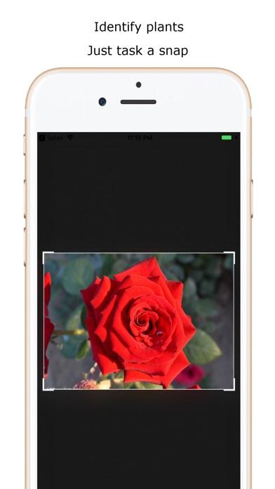 iplant - Plant Identification Screenshots