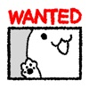 ねこ、探しています。