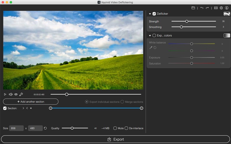 liquivid Video Deflickering