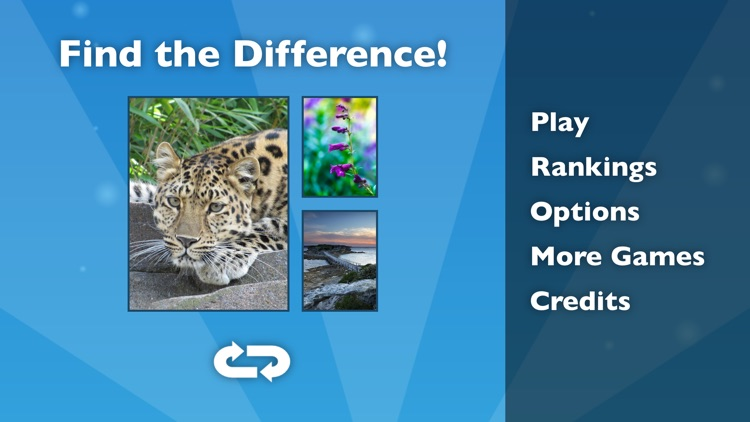 Find the Difference! screenshot-3