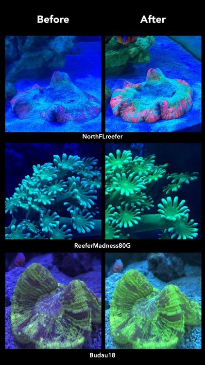 Aquarium Camera screenshot-3