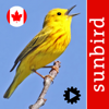 Bird Song Id Canada songs & calls