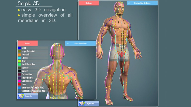 Easy Acupuncture 3D - LITE screenshot-3