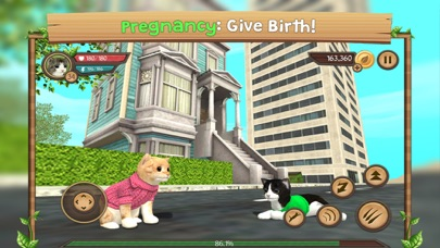 Cat Sim Online: Play With Cats - Revenue & Download