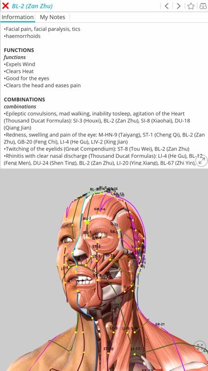 Visual Acupuncture 3D screenshot-0