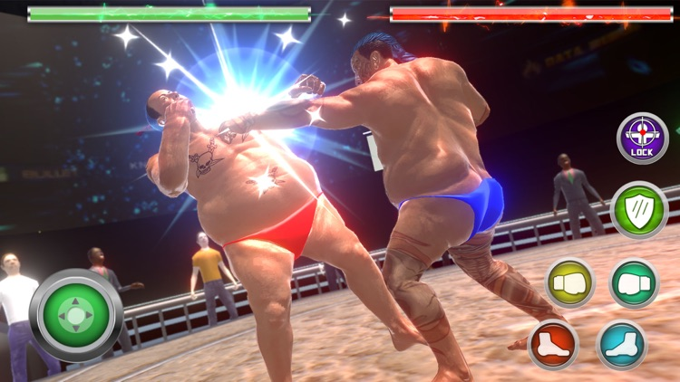 Real Sumo Fighting 2017 screenshot-4