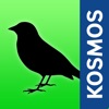 Birds of Europe Guide