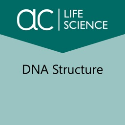 Exploring the Structure of DNA