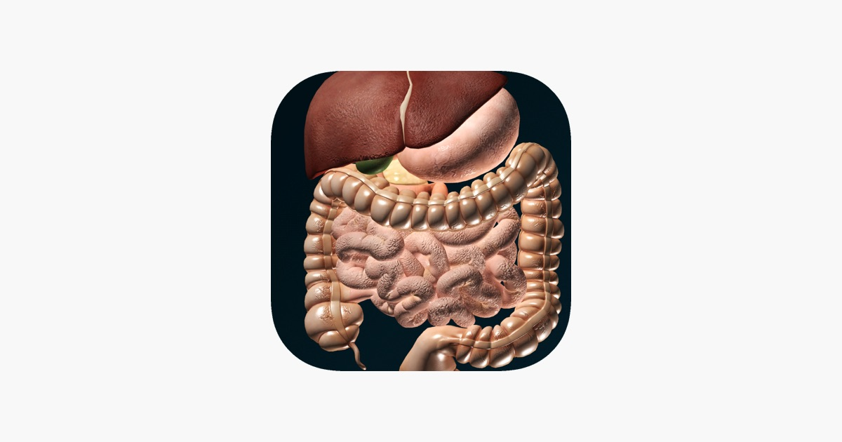 ORGANS 3D (ANATOMY) on the App Store