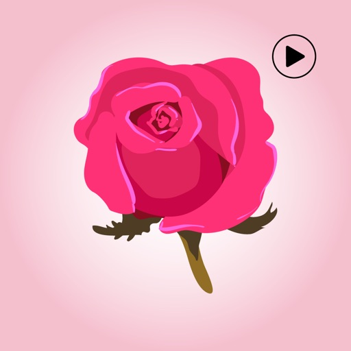 Animated Rose Day Stickers
