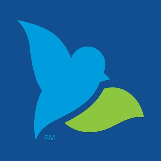 Bluebird by American Express