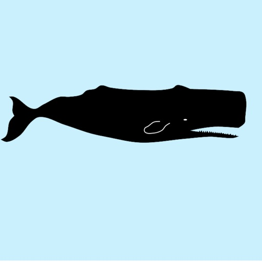 Real Whale Stickers