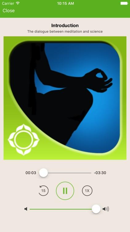 Meditation - Shinzen Young