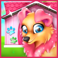 Activities of Pet Puppy House Decoration