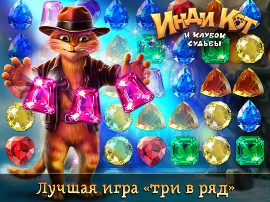 Инди Кот для ВКонтакте и ОК на iPad