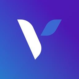VoizBox