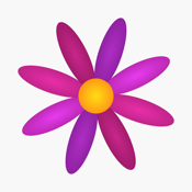 Menstrual Period Tracker Pro app review