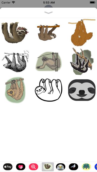 点击获取Slow Sloth Stickers