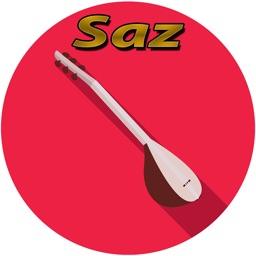 Saz Baglama Cal Electric