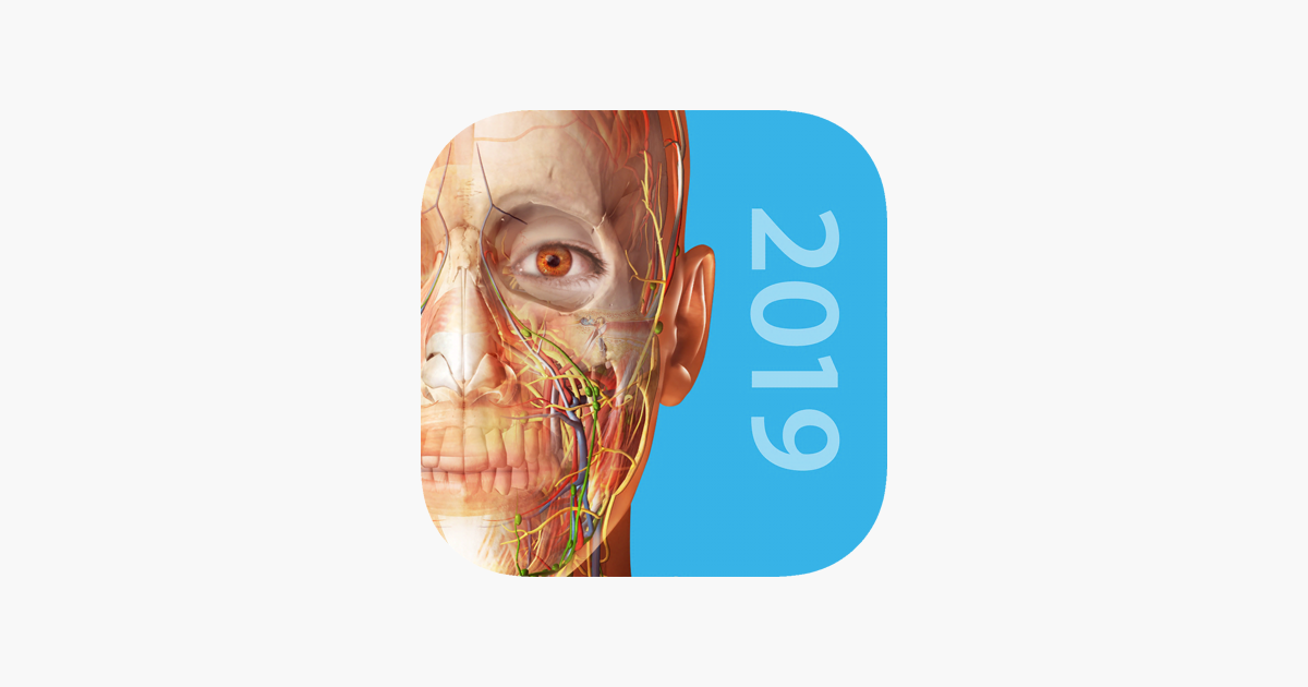Human Anatomy Atlas 2019 On The App Store